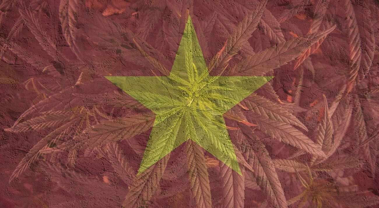 Vietnam lag with cannabis overlay